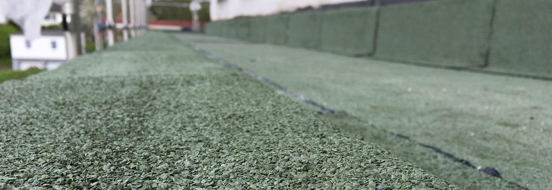Nahaufnahme Flachdach grün